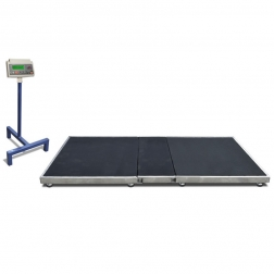 Weighing Systems DORA